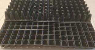 تولید سینی نشا در قزوین